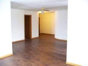 Extra Large Downtown 2-Bdrm Apartment Heated 1.5 Bath May 1st