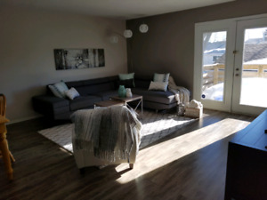 Roommate wanted in South St Vital