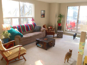 Sublet sunny, south facing apt in fab social building, old north