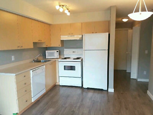 Beautiful semi-furnished one bedroom condo in Airdrie