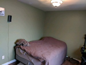 Large room walking distance to village mall and sobeys