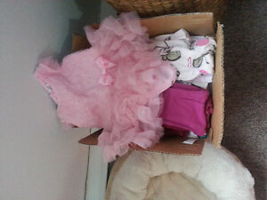 3-6 Month Girls clothes lot
