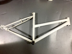 White steel low-step frame for fixie/single speed build