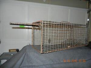 Rabbit / squirrel live trap