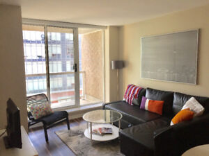Beautiful, spacious, centrally located 1 Bdrm condo - March 1