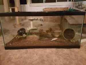40 gallon tank with locking lid
