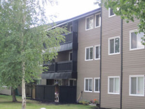 Investment Opportunity! Upgraded 2 Bedroom Condo - Edson, AB