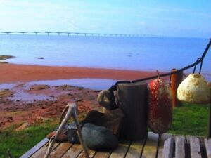 QUALITY OCEANFRONT COTTAGE 1bed/bath with AMAZING BRIDGEVIEWS!!
