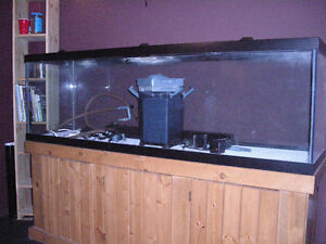 110 GALLON TANK AND STAND!  AND LOTS OF OTHER FUN STUFF