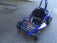 Fun kart 48 v battery powered