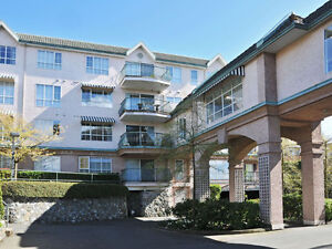 Lovely, Bright 1 Bed suite in 55+ Building - Tillicum Rd
