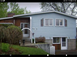 3 bedroom house for rent in Hampton January 31st