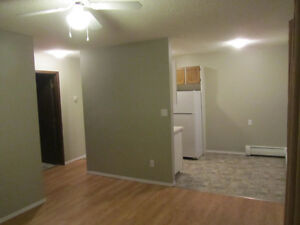 April 1 (1 Bdrm apt) MonthlyLease/PetsConsidered/NearDownTown