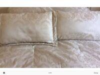 Damask double comforter & 2 pillow shams