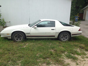 Selling 82 Chevy Camaro. 50,000 KM. $4500 or trade for Truck