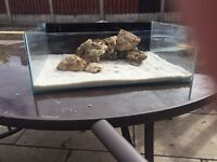 frag/shallow reef tank