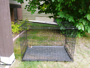 XXL Petmate Wire Dog Kennel