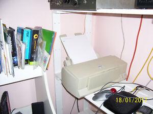 Epson Color 400 printer