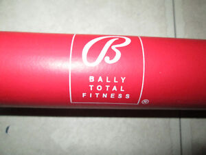 New, BALLY TOTAL FITNESS Chinning and Sit Up Bar Kingston Kingston Area image 3