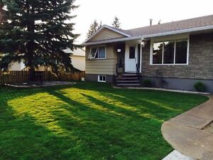 Available immediately! One bedroom walkout basement suite