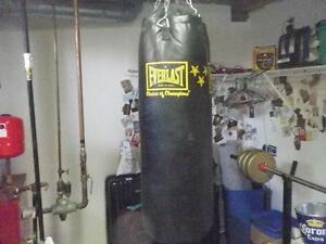 Everlast Heavy Bag