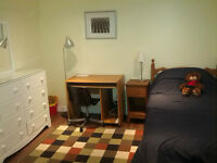Excellent Room Near Warden Subway