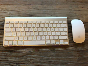 Apple Bluetooth Wireless KeyBoard & Apple BlueTooth Magic Mouse