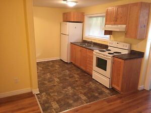 **Great 1-Br Apt in Portugal Cove Rd - 5 Min from Airport** St. John's Newfoundland image 3