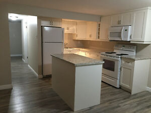 Beautiful Renovated Basement Apartment in Lower Sackville