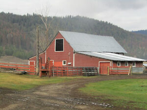 Cattle Ranch in Greenwood BC