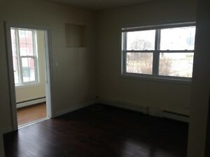 Spacious 2 Bedroom Primely Located (Heat & Lights Included)