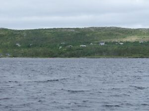 REDUCED ! Only for serious country enthusiasts 1 hour to city! St. John's Newfoundland image 10