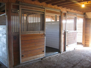 Horse Boarding Available ***Recently Renovated Stable*** Kawartha Lakes Peterborough Area image 4