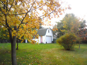 Single family, huge rear yard, garage, shed, fully developed St. John's Newfoundland image 2
