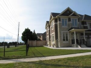 One bedroom basement apartment for rent in Churchill Meadow