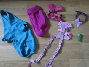 Harnesses  and leash  matching and assortment of clothing