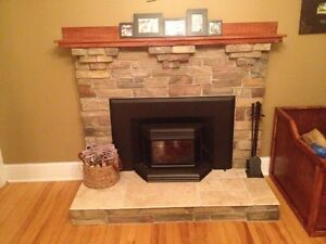 3 yr old Osborn wood stove fireplace insert