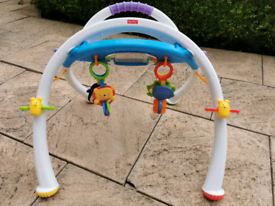 Fisher -Price Baby Gym