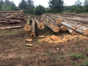Firewood logs U pick up with log truck with picker
