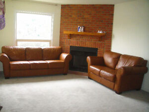 High End Leather Couch And Loveseat, Can Deliver
