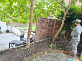 LANDSCAPING GARDEN CLEARENCES JUNGLE &GREEN COLLEC NEW FENCE& REPAIR