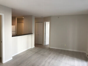 2BR - Beautiful 2 bedrooms 2 baths + DEN for RENT at The Oscar