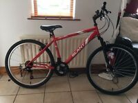 BRAND NEW mountain bike 17'' Apollo