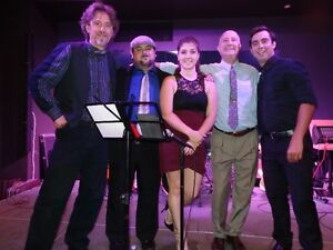 band for hire ; weddings,parties,corporate,bar mitzvahs. we are Cambridge Kitchener Area image 1