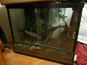 Terrariums for sale