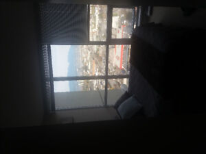 Room for rent in fully furnished 2 bed 2 bath condo. Avail Dec 1