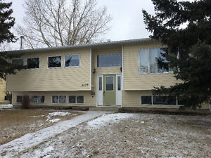 House for Rent in Stettler