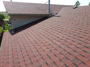 --Affordable Roof Replacement-- Call today! 295-5045