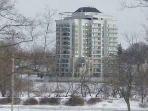 Full Grand River View! / MLS 30544399 / 506-170 Water St N