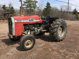 255 massey furgeson, low hours